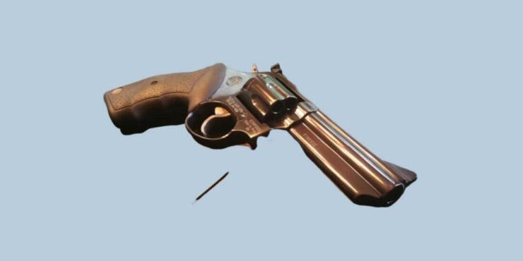 TAURUS 66 revolver