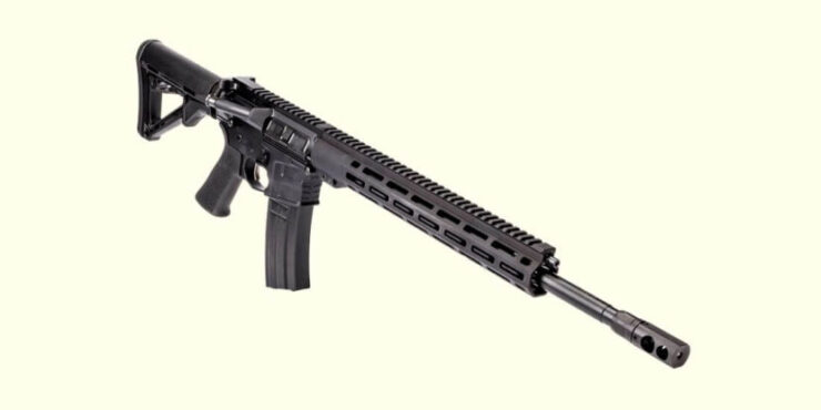 Best 224 Valkyrie Rifles Review in 2021 – New Edition