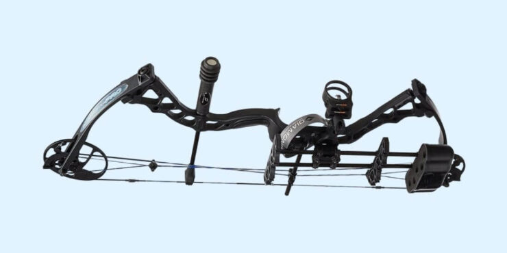 WHAT BOW IS BEST FOR BEGINNERS