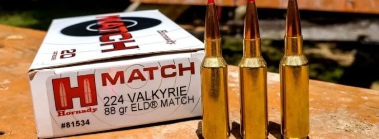 Exterior Features to Look for in a .224 Valkyrie Mag