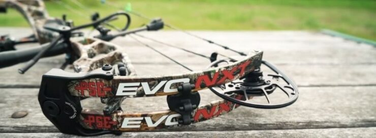 Which Bows Are Best for Hunting