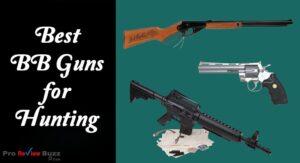 Best BB Guns for Hunting