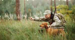 Type Of Hunting Dogs