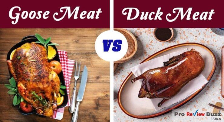 Goose vs Duck Meat