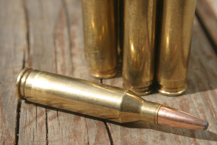 Hornady vs Winchester Brass